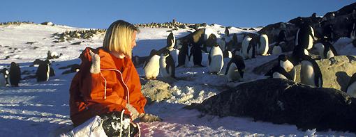 Trish Hart with Adelie penguins at Davis base 1987